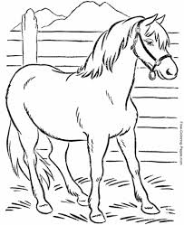Crazy horse is a word/letter game with solution. Horse Coloring Pages Sheets And Pictures