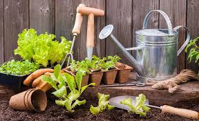 whether you re new to the world of gardening or a well seasoned veteran it s good to know the proper use of each gardening tool and to make sure you have