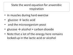 state the word equation for anaerobic respiration