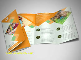 Top Result Brochure Templates For School Project Best Of 21 ...