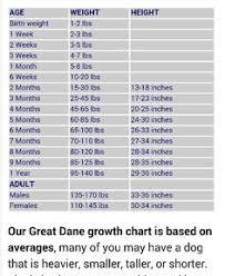 Great Dane Food Chart Great Dane