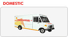 The Professional Couriers Services