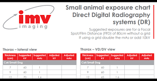 Why Use X Ray Exposure Charts Imv Imaging