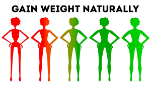 Healthy Diet Chart For Teenage Girl To Gain Weight How To Gain Weight Naturally In Less Than A Month