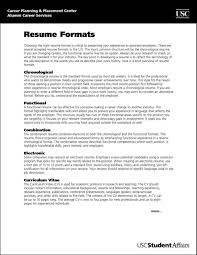 Most Professional Resume Template Free Samples Examples