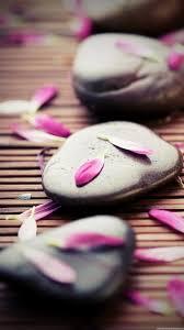 Zen Stones Pink Petals iPhone 6 Plus HD ...
