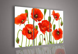 3 piece wall art no frameless draw modern abstract acrylic flower red poppy oil painting on