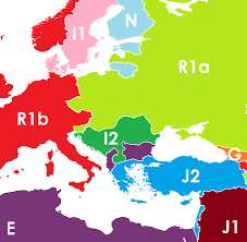 the map below shows what the borders of europe the middle east and north africa might look like if they were based on the dominant y dna haplogroup