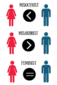 Best 25 Definition Of Feminism Ideas On Pinterest Definition Of