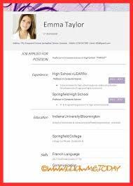 Resume Examples Pdf Good Resume Format