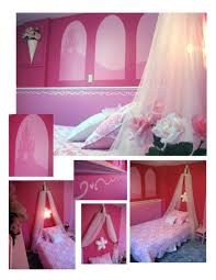 Princess Themed Bedroom Bedroom Pink And Blue Princess Themed Bedroom The Hidden Agenda Of