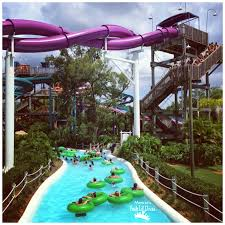 you can check out the fun we had in this post today i want to share the fun we had at adventure island busch garden s water park