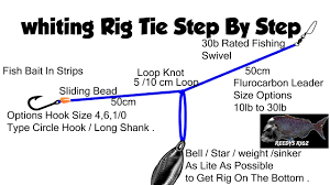 Whiting Rig Tie Fishing Rigs Make Rigs Tying Diagram Fast Current