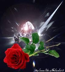 Hermosas imágenes en movimiento y con brillo | Rosas bonitas, Fotos animadas de amor, Flores