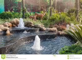 Artificial Pond Design Natural Style Water Scene Small Garden Waterscape Design