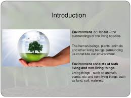 environment essay environment essay 2