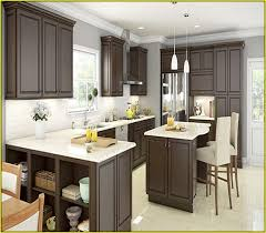 simple ideas home depot kitchen cabinets espresso