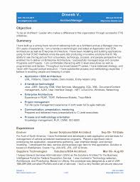 9 Beautiful Service Delivery Manager Resume Sample Resume Sample