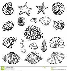 Small Picture Seashell Coloring Pages