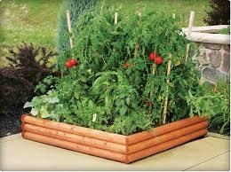 Small Picture Raised Bed Vegetable Garden Plans Design Ideas GylesHomescom