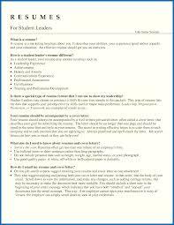 Resume Samples For Team Leader Position Leadership Skills Resume Examples Alluring Resume For Group Leader 2