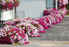 flower garden design. Garden Design With Flower Bed Ideas Landscape From Landscap Tips For Minimalist House Home Decorating Front H