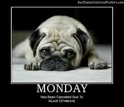 funny motivational posters for office. mondaycutedogbestdemotivationalposters funny motivational posters for office