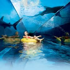 Simple Underwater Water Slide Atlantis Waterpark Waterslides A With Creativity Ideas