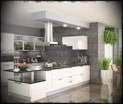 modular kitchen designs india johnson kitchens indian best creative
