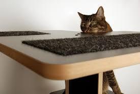cat modern furniture. image of cute modern cat furniture