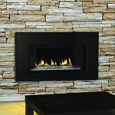 for the napoleon n a btu direct vent natural gas fireplace insert with glass door and reflective panels and save