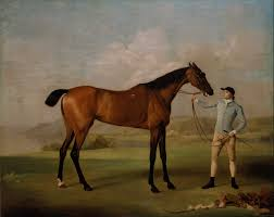 file george stubbs molly long legs with her jockey google art project