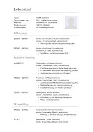Lebenslauf Muster F R Buchhalter Lebenslauf Designs