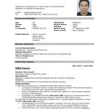 Resume Format For Job Sample Of Biodata For Job Application