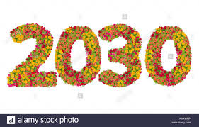 happy new year 2030. Delighful 2030 Numbers 2030 Made From Zinnias Flowers Isolated On White Background With  Clipping Path Happy New On New Year E
