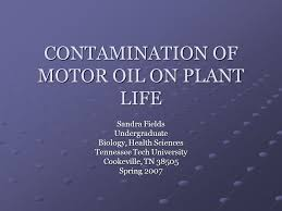 CONTAMINATION OF MOTOR OIL ON PLANT LIFE Sandra Fields Undergraduate  Biology, Health Sciences Tennessee Tech University Cookeville, TN Spring  ppt download