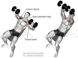 18 Best Weightlifting Images On Pinterest  Olympic Weightlifting 225 Bench Press Workout
