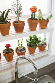 Kitchen Window Shelf Diy 20 Ideas Of Window Herb Garden For Your Kitchen Designrulz