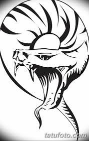 черно белый эскиз тату змея 11032019 021 Tattoo Sketch