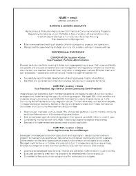 Vice President Cover Letter Banking Cover Letter Collection Of