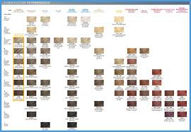 Miss Clairol Professional Hair Color Chart 563136 Clairol