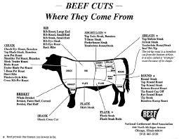 Beef Primal Chart Pin On Interior Ideas Displays