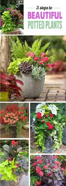 garden container container pots for shade to best tropical flowers for your patio
