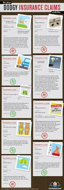 infographics crazy insurance claims