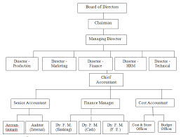 Corporate Finance Organizational Chart Study Solve Books On Corporate Finance Course Materials
