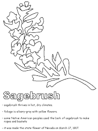 Small Picture Sagebrush coloring page