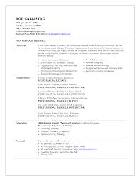baseball resume for college sample resume  baseball