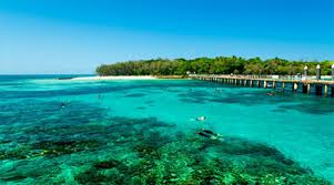 Best Time To Visit Cairns For Weather And Price Finder Com Au