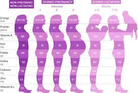 23 Weeks Pregnant In Months Chart Bedowntowndaytona Com