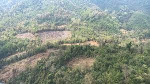 พบบุกรุกเพิ่ม ป่าบางกลอย แก่งกระจาน คนเพชรฯฮือ ร้องจัดการเด็ดขาด